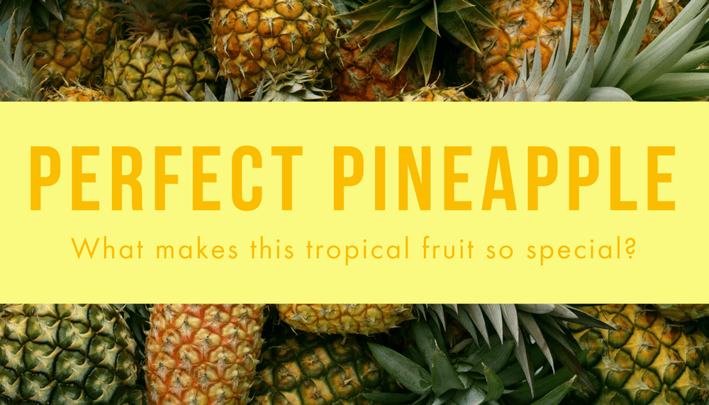 Perfect Pineapple: What makes this fruit so special?
