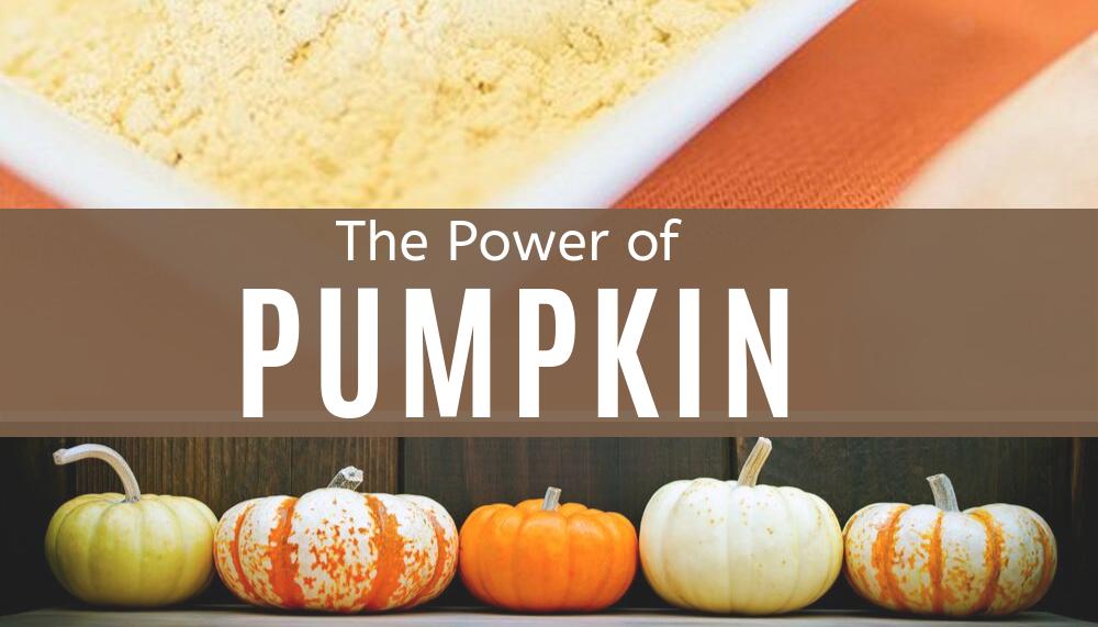 pumpkin powder and raw decorative pumpkins