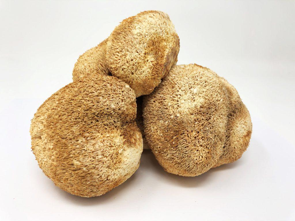 lions-mane-mushroom